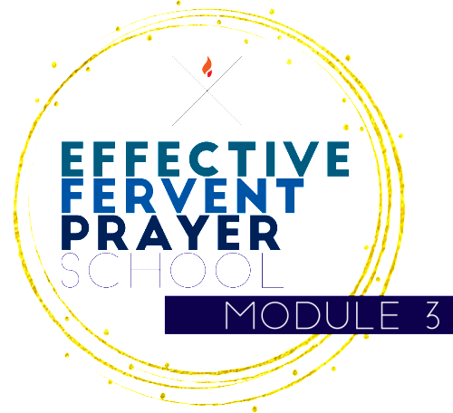 EFP School 2016